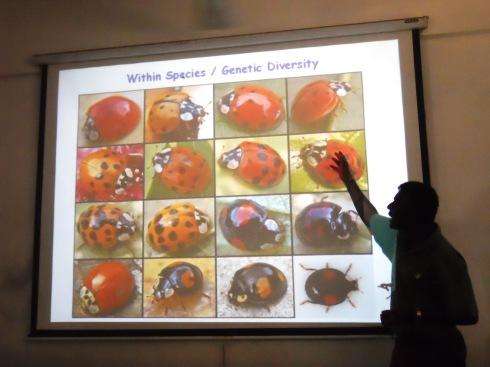 9 - Within species - Genetic diversity