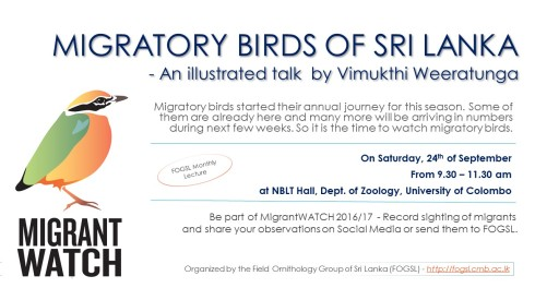 migratory-birds-of-sri-lanka-illustrated-talk-by-vimukthi-weeratunga
