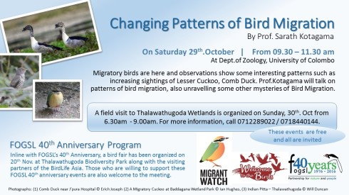 new-trends-of-bird-migration-october-2016-final